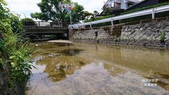 三角橋 多布施川 埋められて棚路.jpg