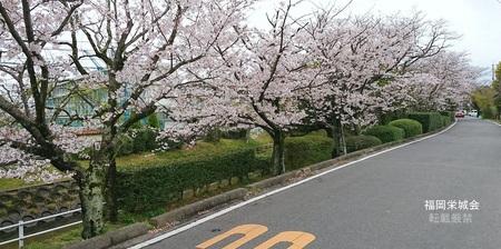 佐賀工業高校の東を流れる多布施川 多布施川通り.jpg