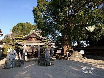 佐賀恵比寿神社.jpg