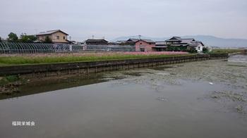 嘉瀬町 クリーク.jpg