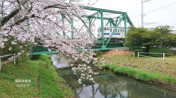 多布施川橋梁.jpg
