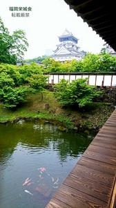 小倉城庭園書院から.jpg