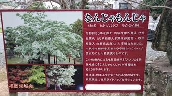 岡湊神社 説明版.jpg