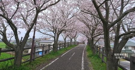 徐福サイクリングロード ふれあい橋 付近 1.jpg