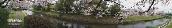 昭和橋からJR鉄橋まで.jpg