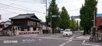 材木橋.jpg