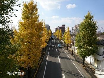 紺屋橋より貫通道路.jpg