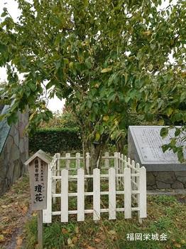 鑑真和上 上陸記念碑 3.jpg