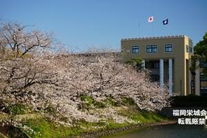 佐賀県庁.jpg