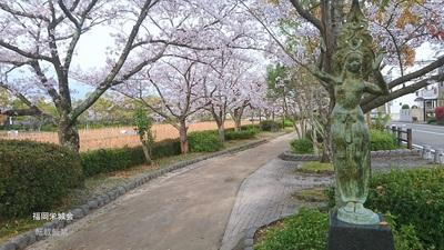 南濠の桜 ブロンズ 沼の幻想.jpg
