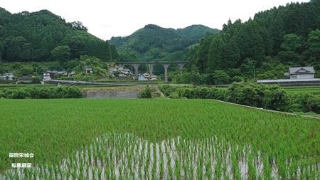 奈良尾橋.jpg