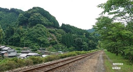 岩屋駅手前の桜並木.jpg