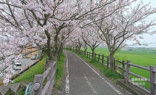 徐福サイクリングロード ふれあい橋 付近.jpg