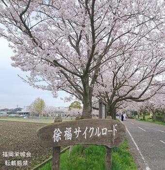 徐福サイクルロード 入口.jpg