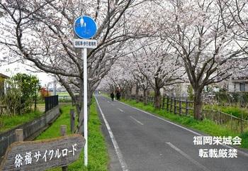 徐福サイクルロード 看板.jpg
