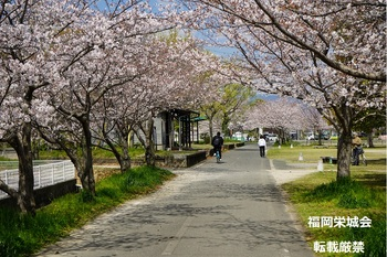 桜並木より南佐賀駅跡.jpg