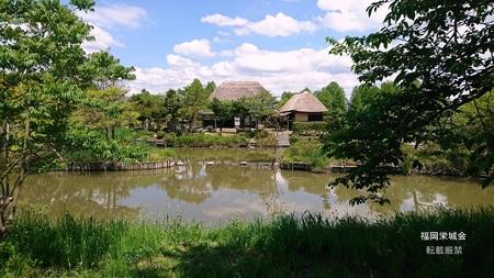 横武公園.jpg